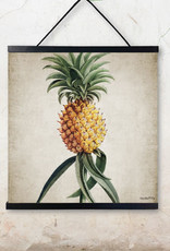 Vanilla Fly POSTER + FRAME - PINEAPPLE 50x50