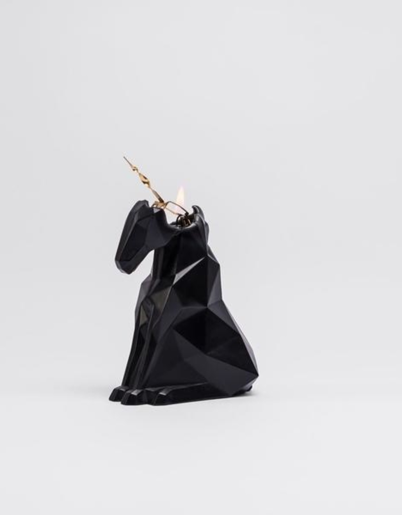 Pyropet PyroPet Einar Candle - Black