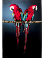 KARE DESIGN Picture Glass Twin Parrot