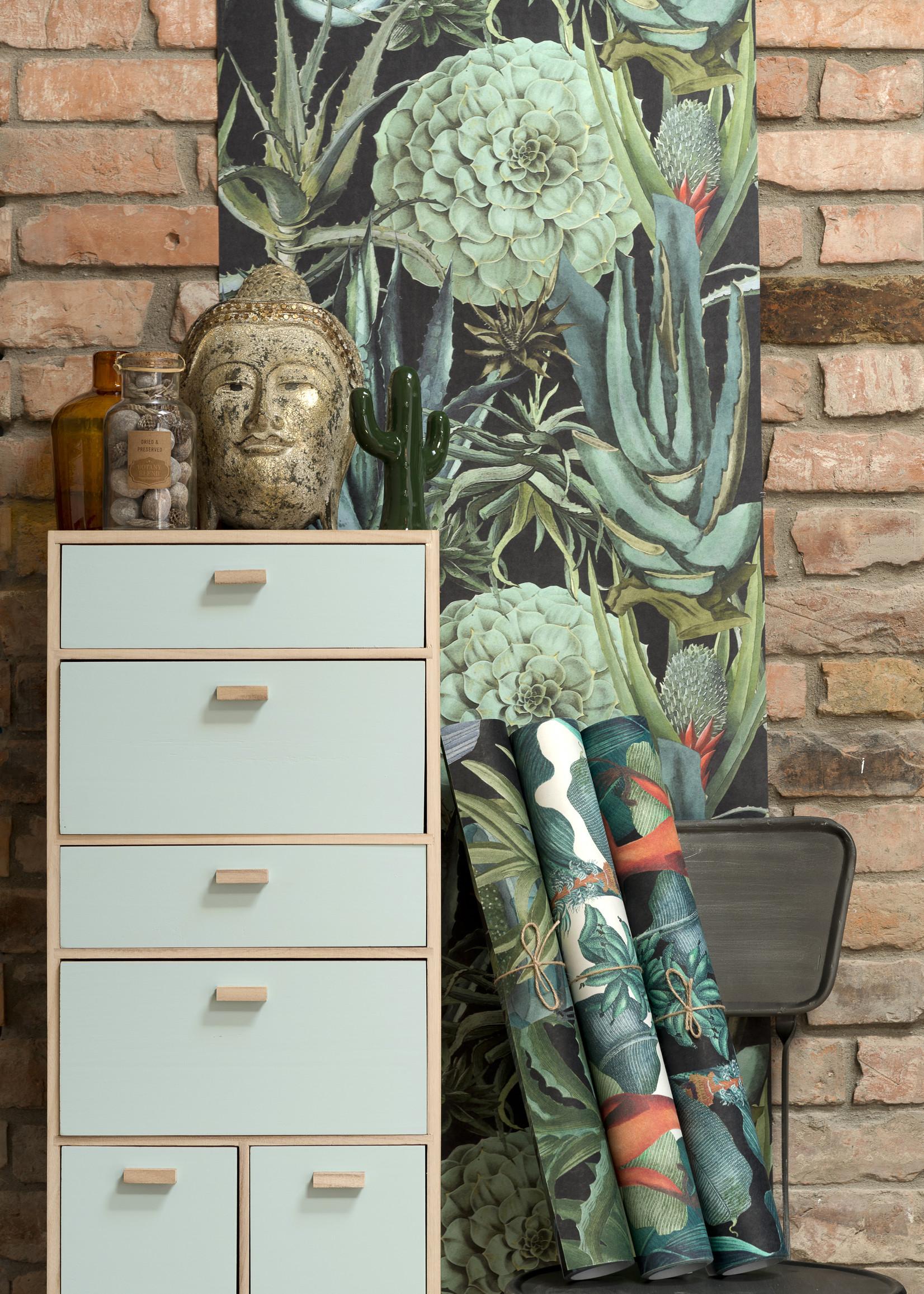 MINDTHEGAP Designer Wallpaper SUCULENTUS anthracite