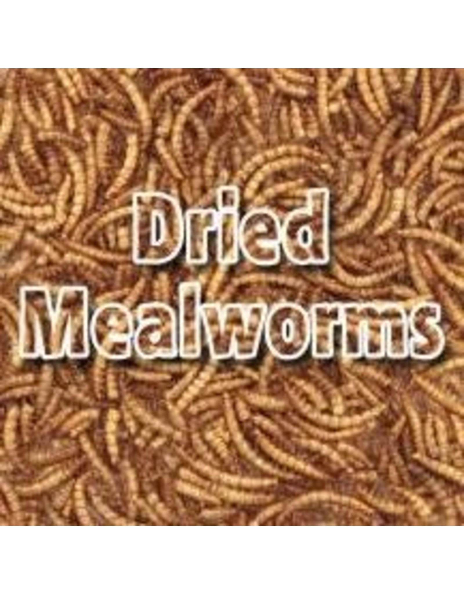 Angell Pets Dried Mealworms