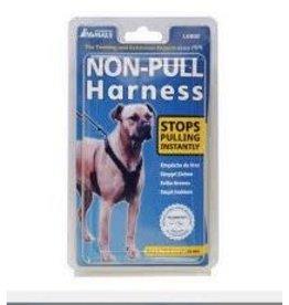 Company Of Animals Halti Non Pull Harness