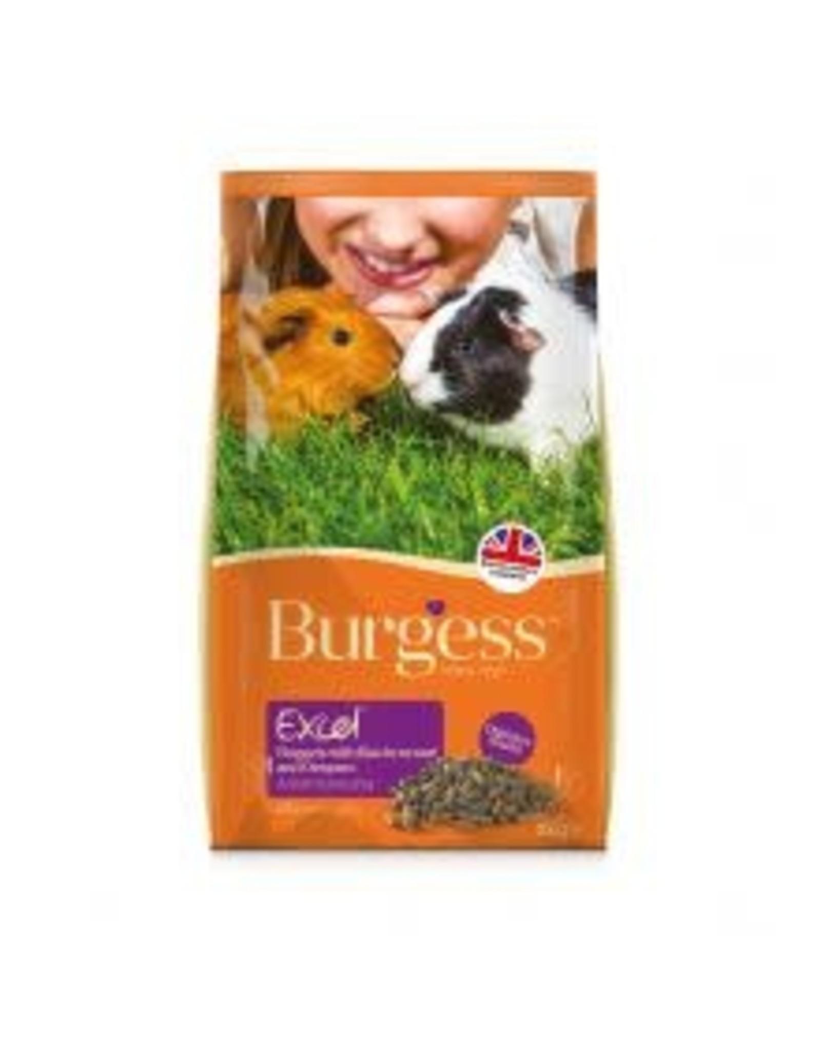Burgess Excel Burgess Excel Guinea Pig Blackcurrant 2kg