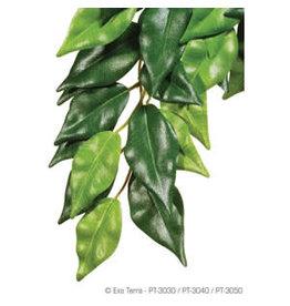 Exo Terra ET Hanging Plant Ficus