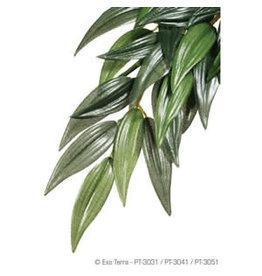 Exo Terra ET Hanging Plant Ruscus