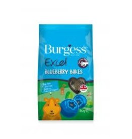 Burgess Excel Burgess Excel Blueberry Bakes 80g