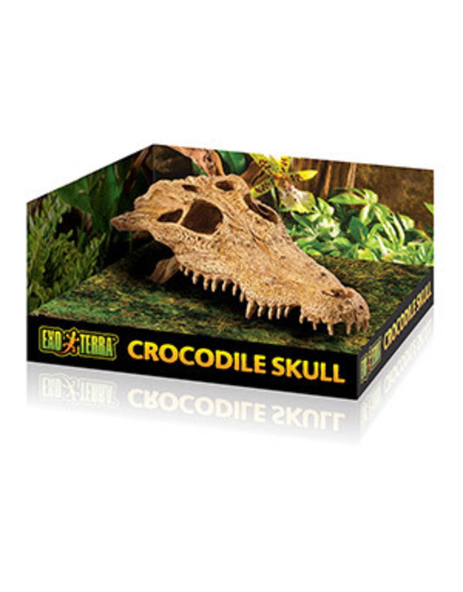 Exo Terra ET Crocodile Skull
