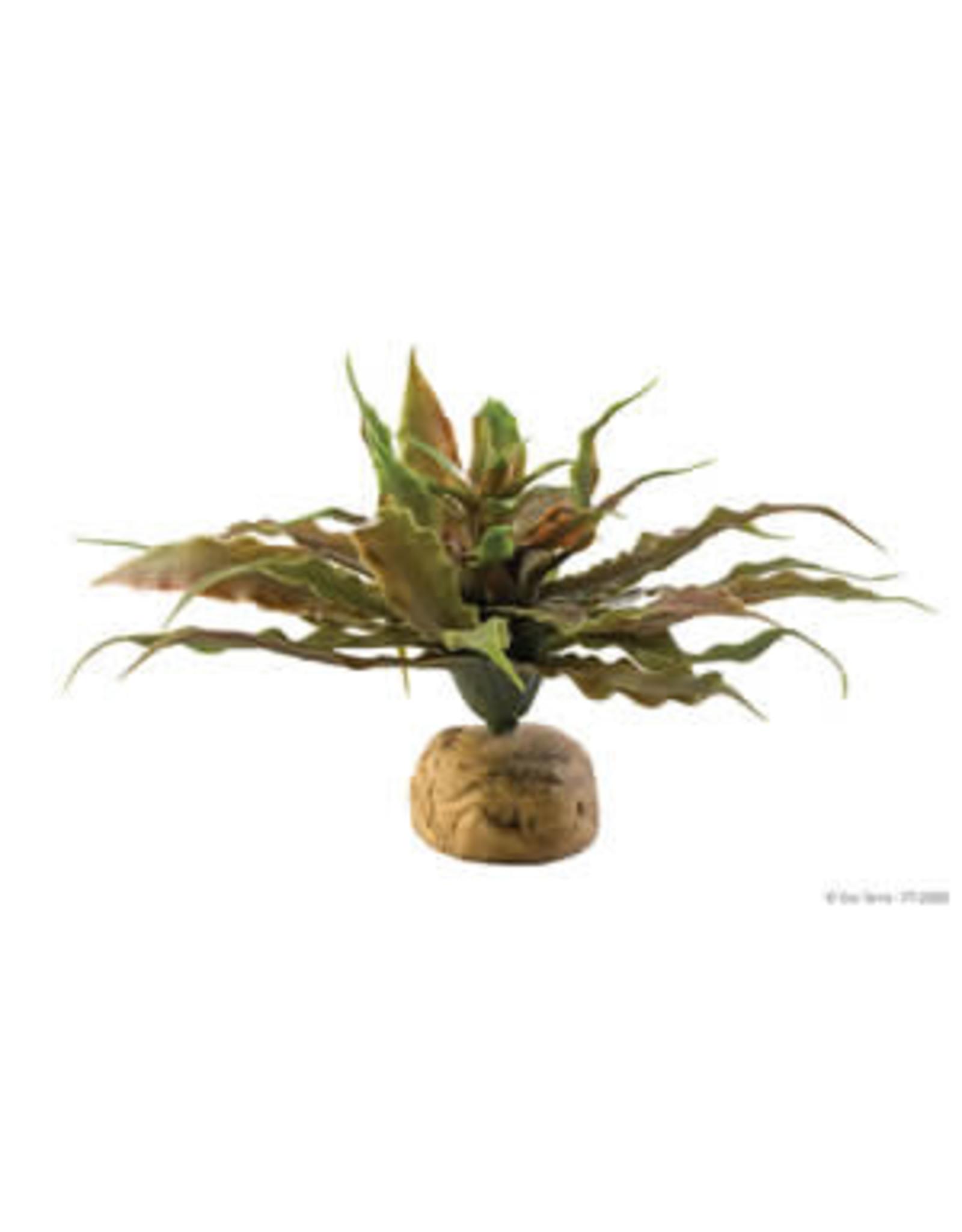 Exo Terra ET Star Cactus