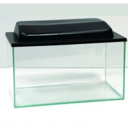 Angell Pets Glass Tank With Lid 18 x 10 x 10""