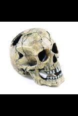 Classic Classic Cracked Skull 20.5cm