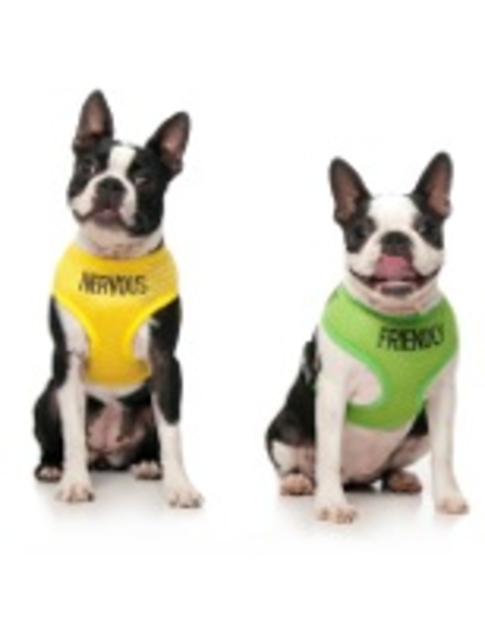 Friendly Dog Friendly  Blind Dog Vest Harness Medium  40cm