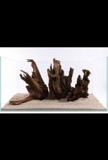 J&K Aquatics Mangrove Large Piece 30-60cm