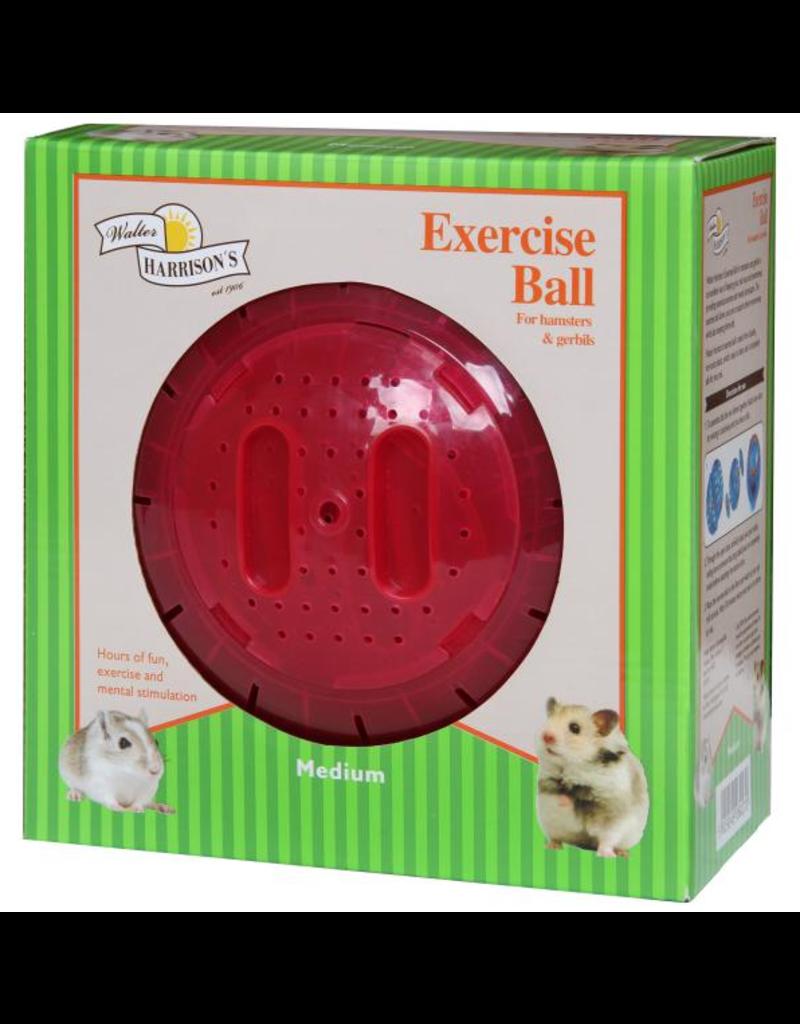Harrison's Harrisons Exercise Ball Medium