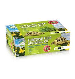 Pro Rep PR Tortoise Feed Growing Kit