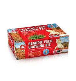 Pro Rep PR Beardie Feed Growing Kit