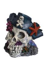 Aqua Spectra AQ Skull with Pirate Hat