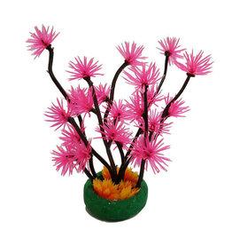 Betta Betta Choice XS Pink Lotus Flower