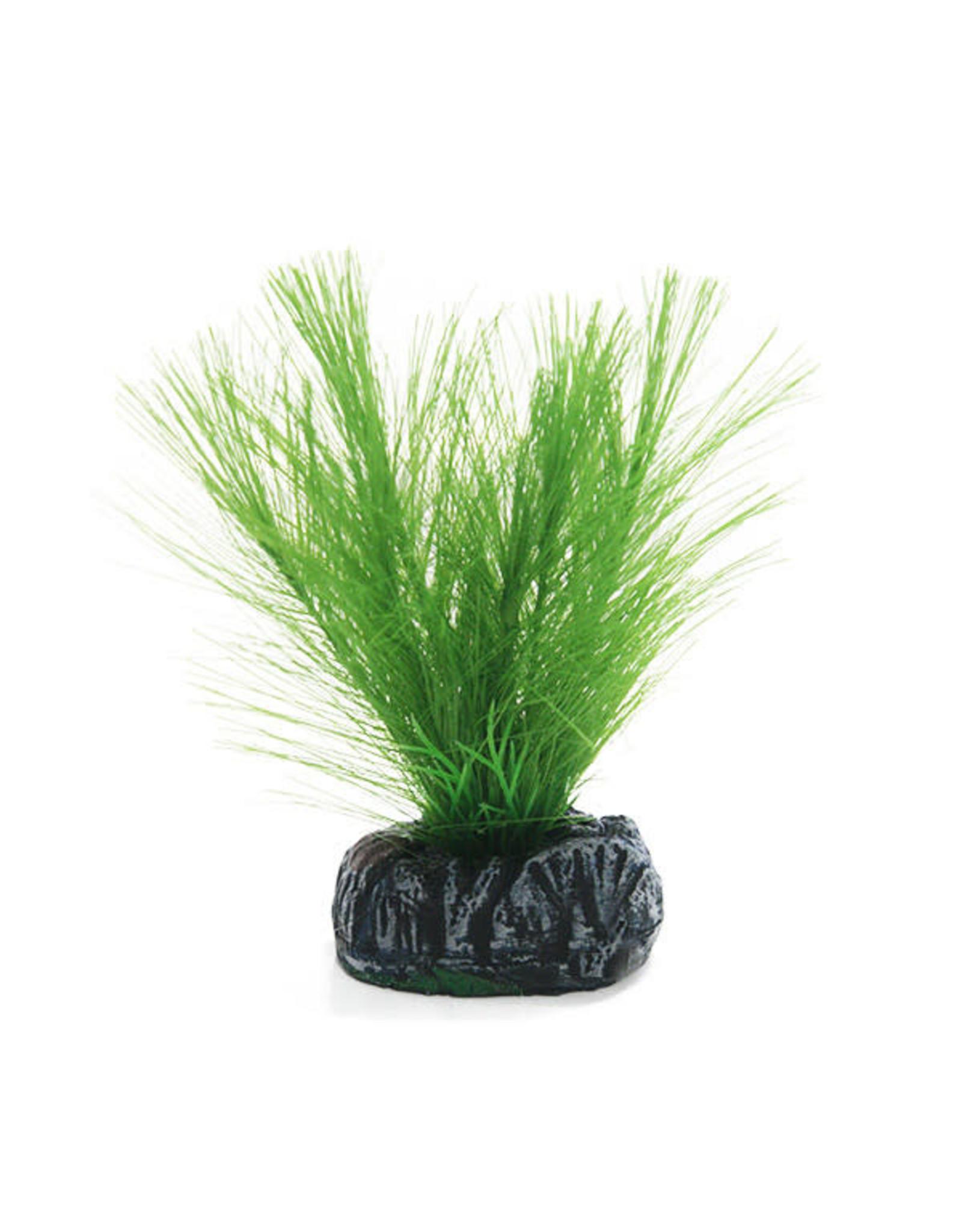 Betta Betta Choice 10cm Silk Green Myriophtllum