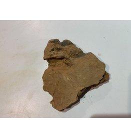 Angell Pets Dragon Rock