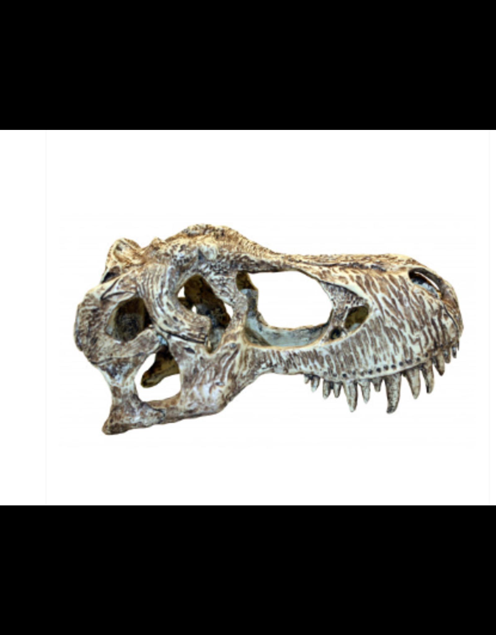 Komodo Komodo T Rex Skull