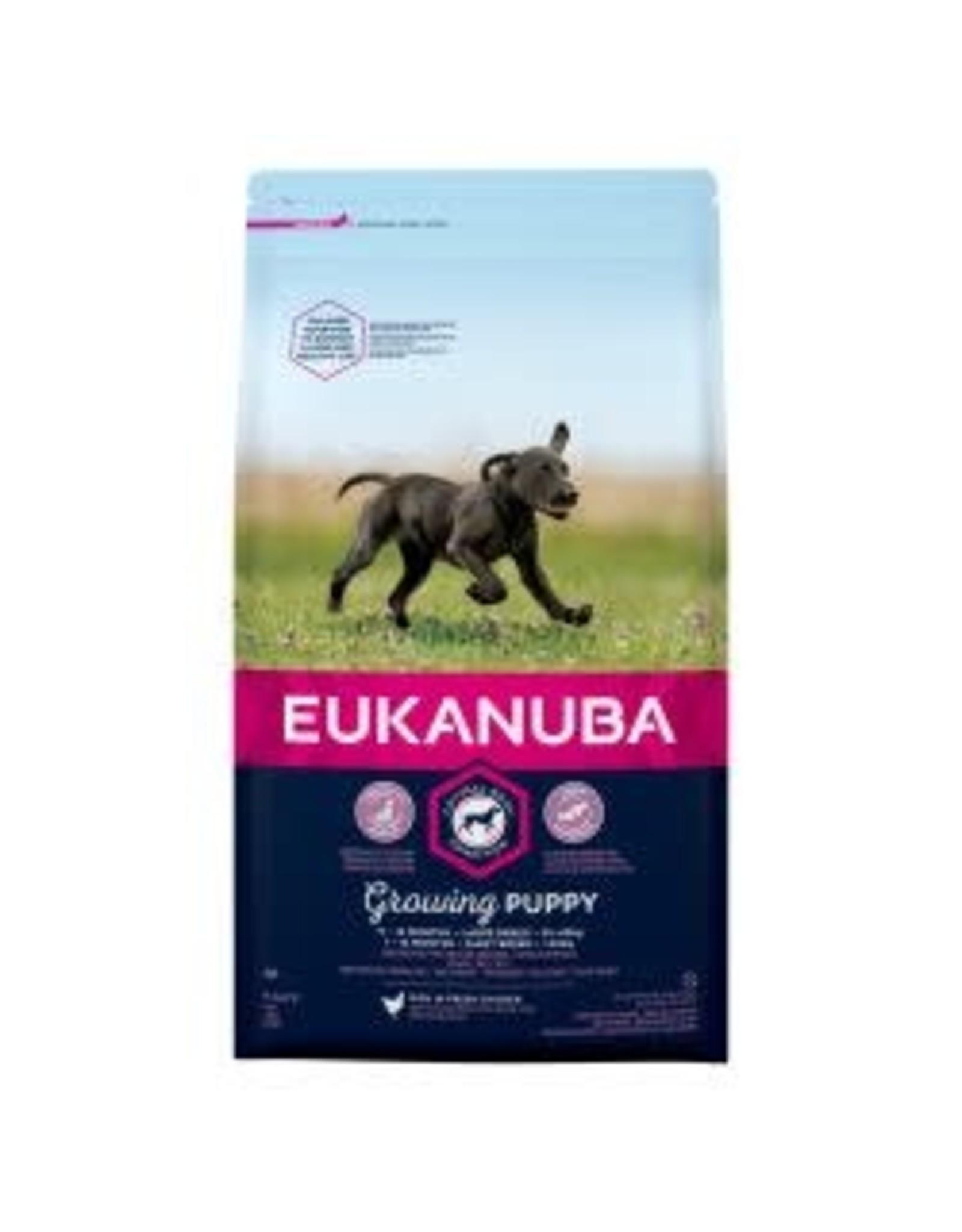 Eukanuba Eukanuba Active Adult Large Breed Chicken 12kg