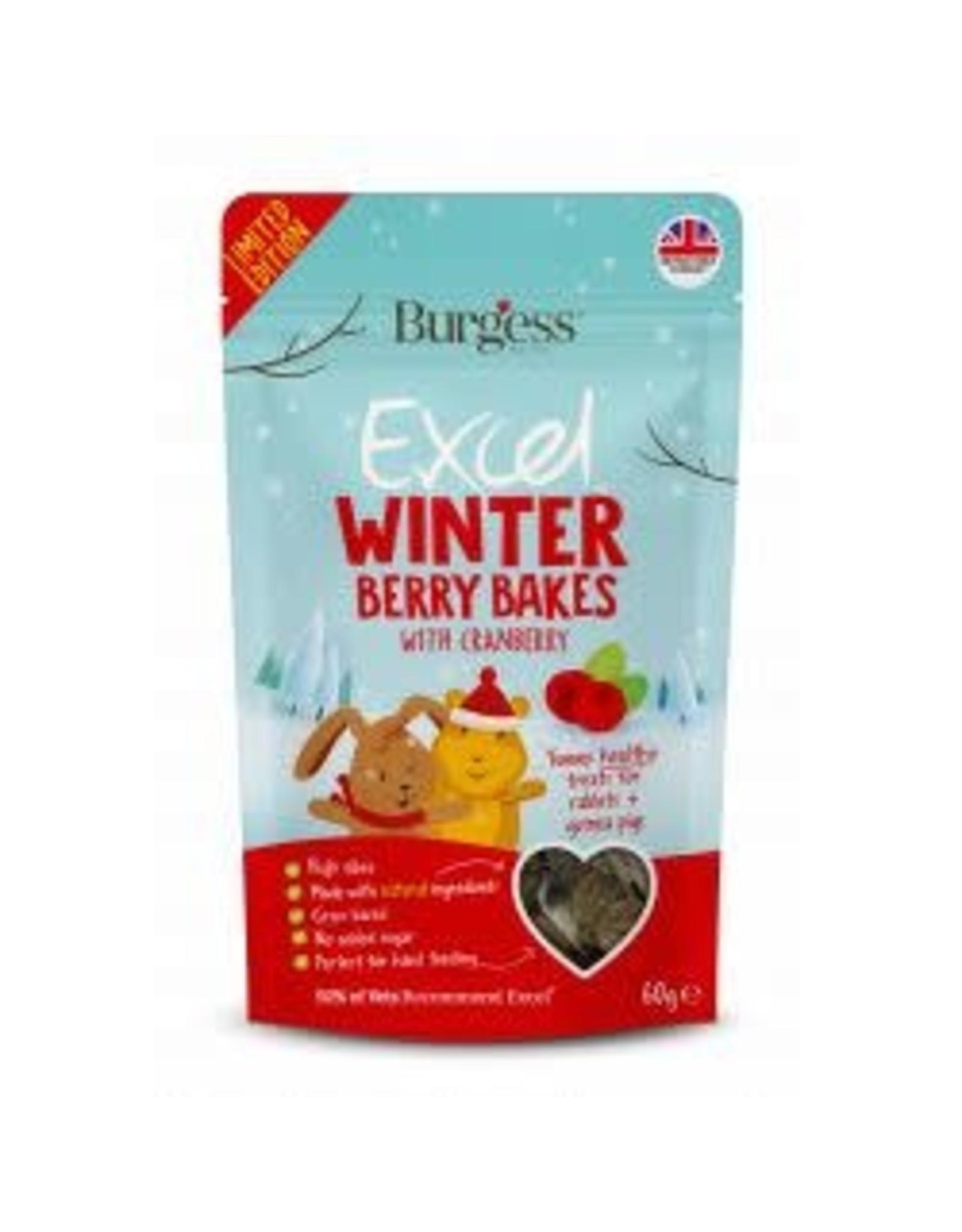 Burgess Burgess Excel Winter Berry Bakes 60g