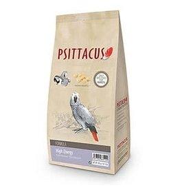 Psittacus Psittacus High Energy