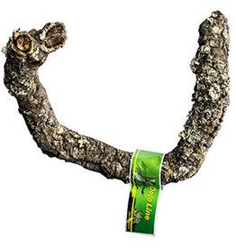 Angell Pets LR Tronchos Cork Branch 30-40cm
