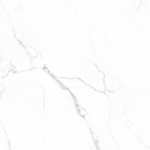 Vloertegel Statuario glans 60x60 rett (Doosinhoud 1,08 M²)