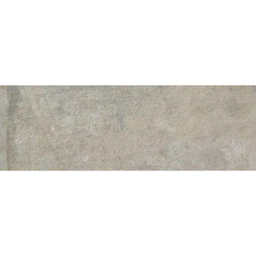 Wandtegel Alaplana P.E. Horton Grey Mat 25x75 cm Grijs (doosinhoud 1.31m2)