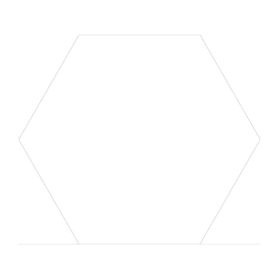Hexagon Vloertegel Azulejo Monolo Blanco 22.5x25.9 cm (doosinhoud 0.88 m2)