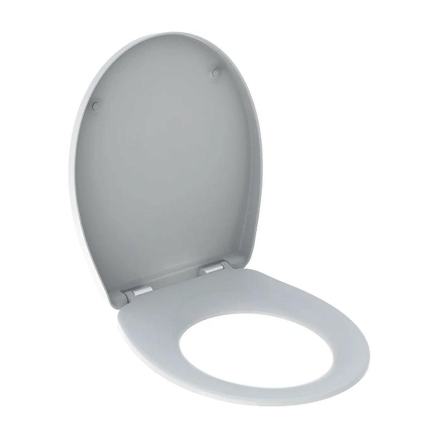 Up100 Toiletset 25 Geberit Econ Rimfree Met Zitting En Delta Drukplaat