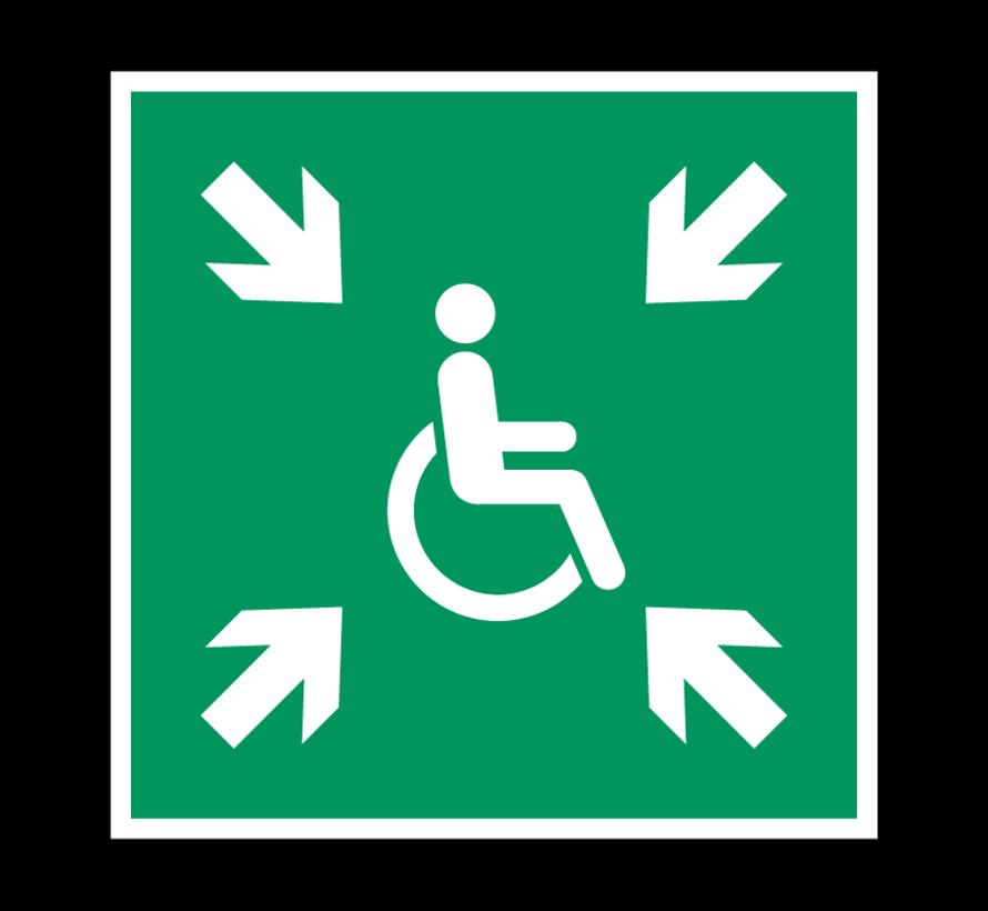 Invalide verzamelplaats pictogram