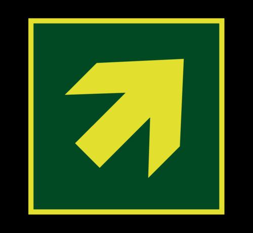 ARBO centrum Richtingaanwijzing schuin lichtgevend pictogram