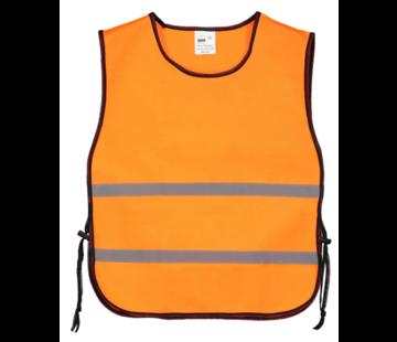 Trainingshesje oranje