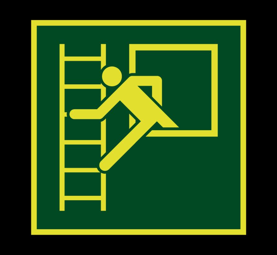 Noodvenster met vluchtladder lichtgevend pictogram