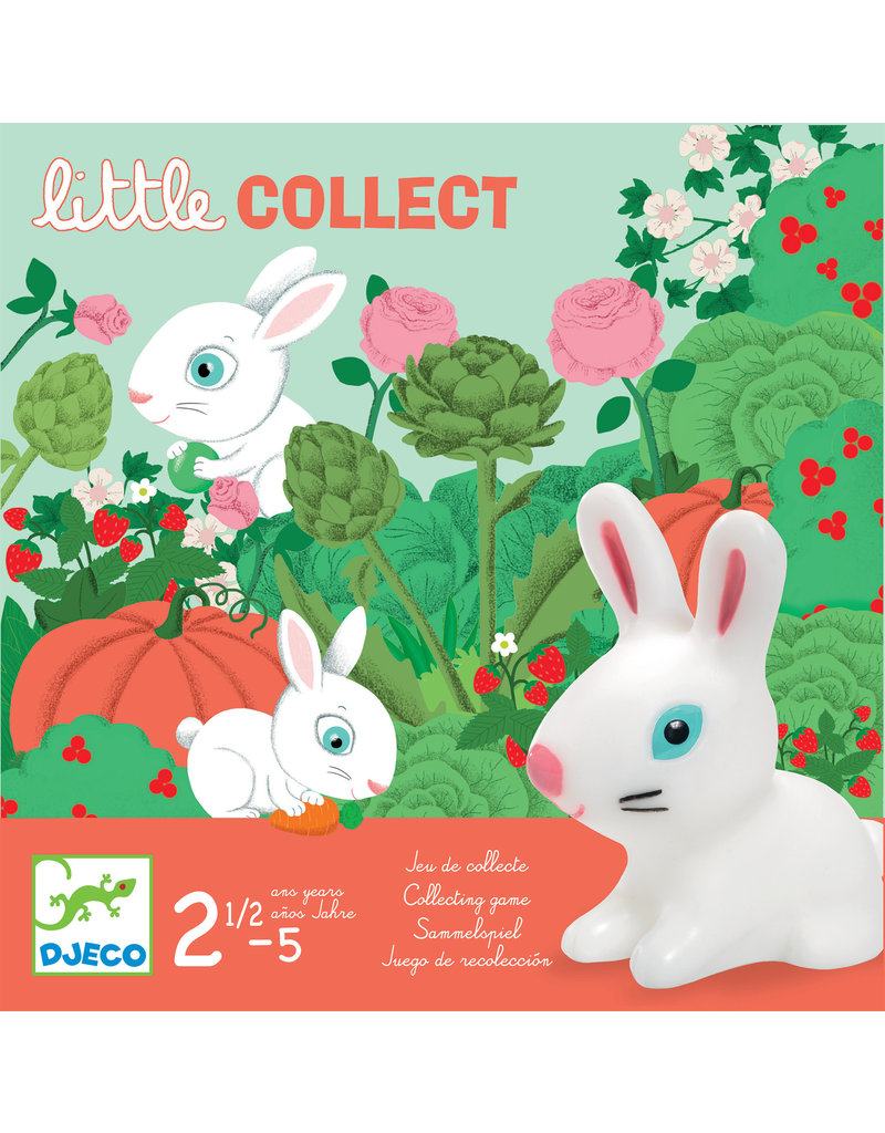 Djeco Djeco Little collect dj08558