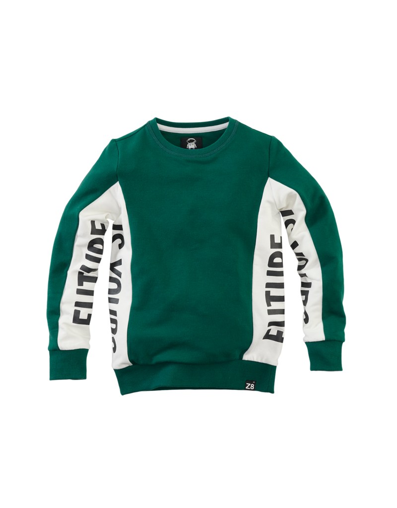 Z8 Z8 sweater Niels future forest