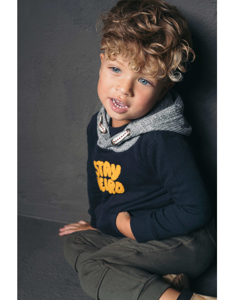 Like Flo Like Flo boys hooded sweater navy