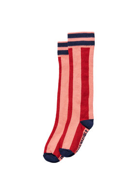 Quapi Quapi kniekousen Djenti red chili stripe