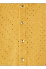 Name-it Name-it vest NBFDesmolly ochre