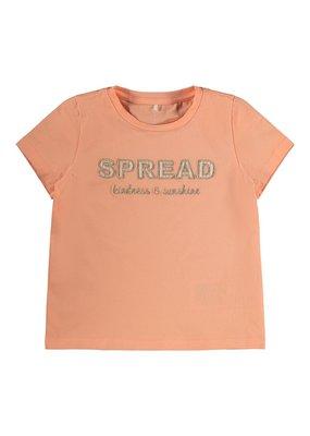 Name-it Name-it shirt NMFFami cantaloupe