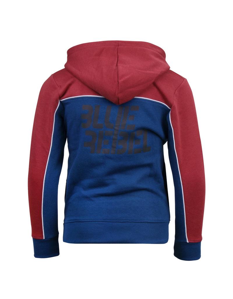 Blue Rebel Blue Rebel sweat hoody colorblock cowhide