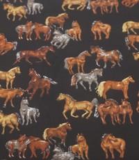 Popeline paarden