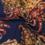 Tricot hidden gems navy