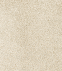 Suedine beige