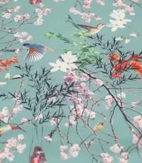 Softshell Japan