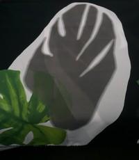 Chiffon met dessin van grote groene bloem