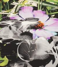 Tricot met een groot bloemenpatroon