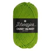 Scheepjes Chunky Monkey Fern (2016)